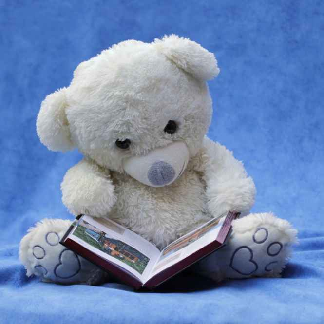 still-life-teddy-white-read-159080.jpeg